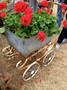 cart w:geraniums