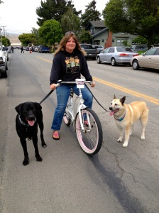 girl:bike:dogs**