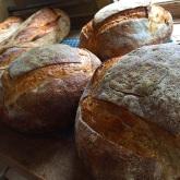 coastal:bread