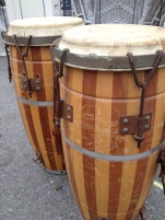 coastal:bongos