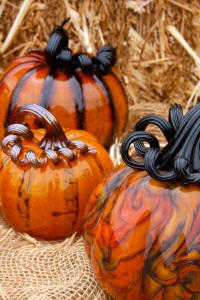 coastal/pumpkins