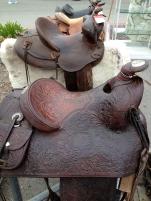 coastal/saddles