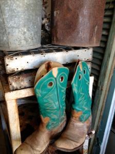 coastal/boots