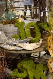 coastal/moss letters