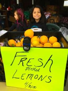 coastal/lemons