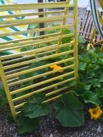 yellow teepee
